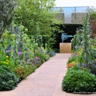 Arthritis Research Garden, Chris Beardshaw landscape architect