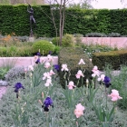 Laurent-Perrier Garden with sculpture and bearded iris